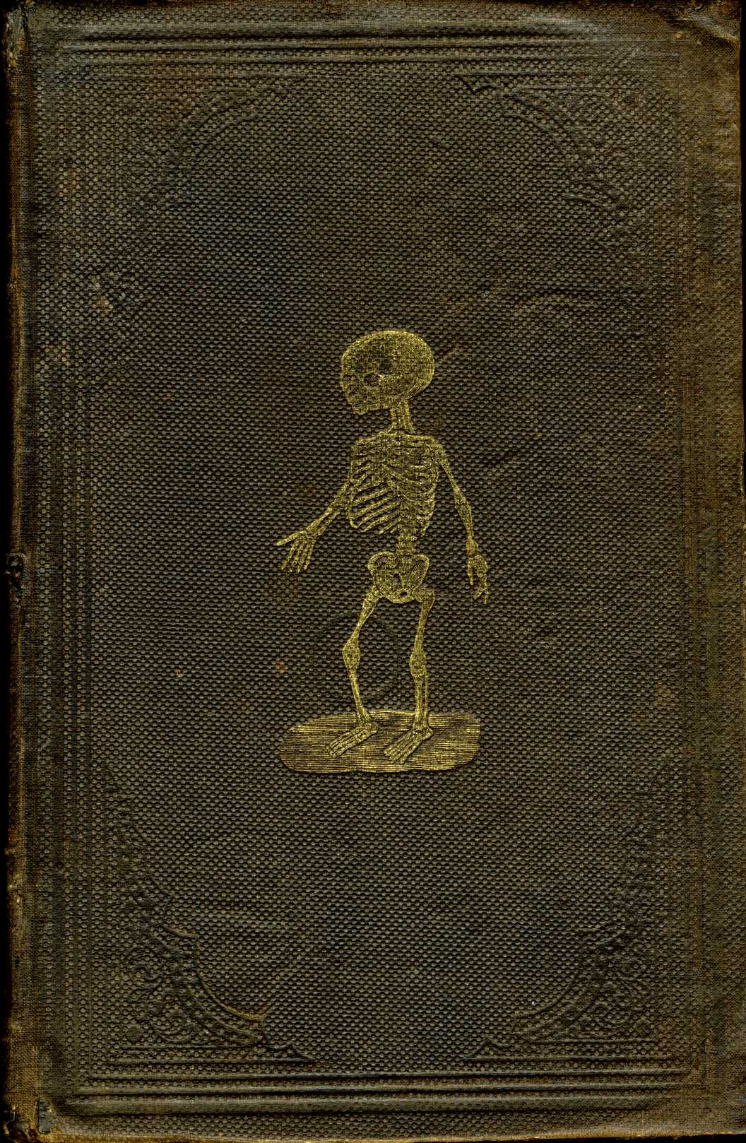 Book Cover Photography Prop ~ Civil war era medical books page